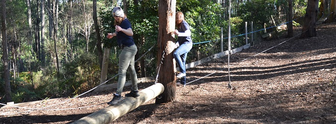 Low Ropes One
